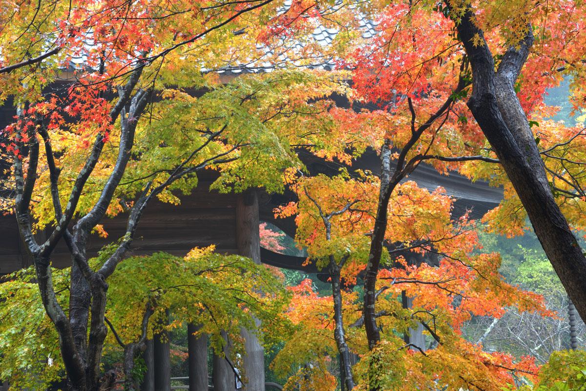 世界遺産 鎌倉