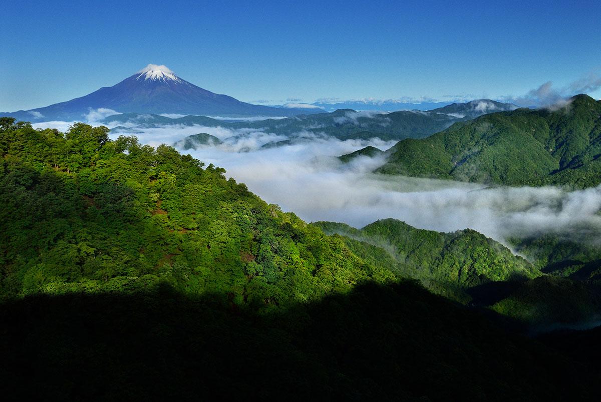 丹沢・塔ノ岳より 富士山展望