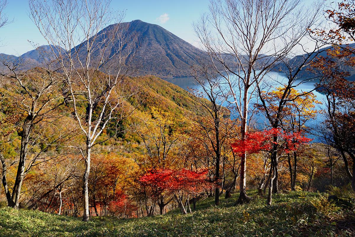 紅葉の山頂・日光・社山