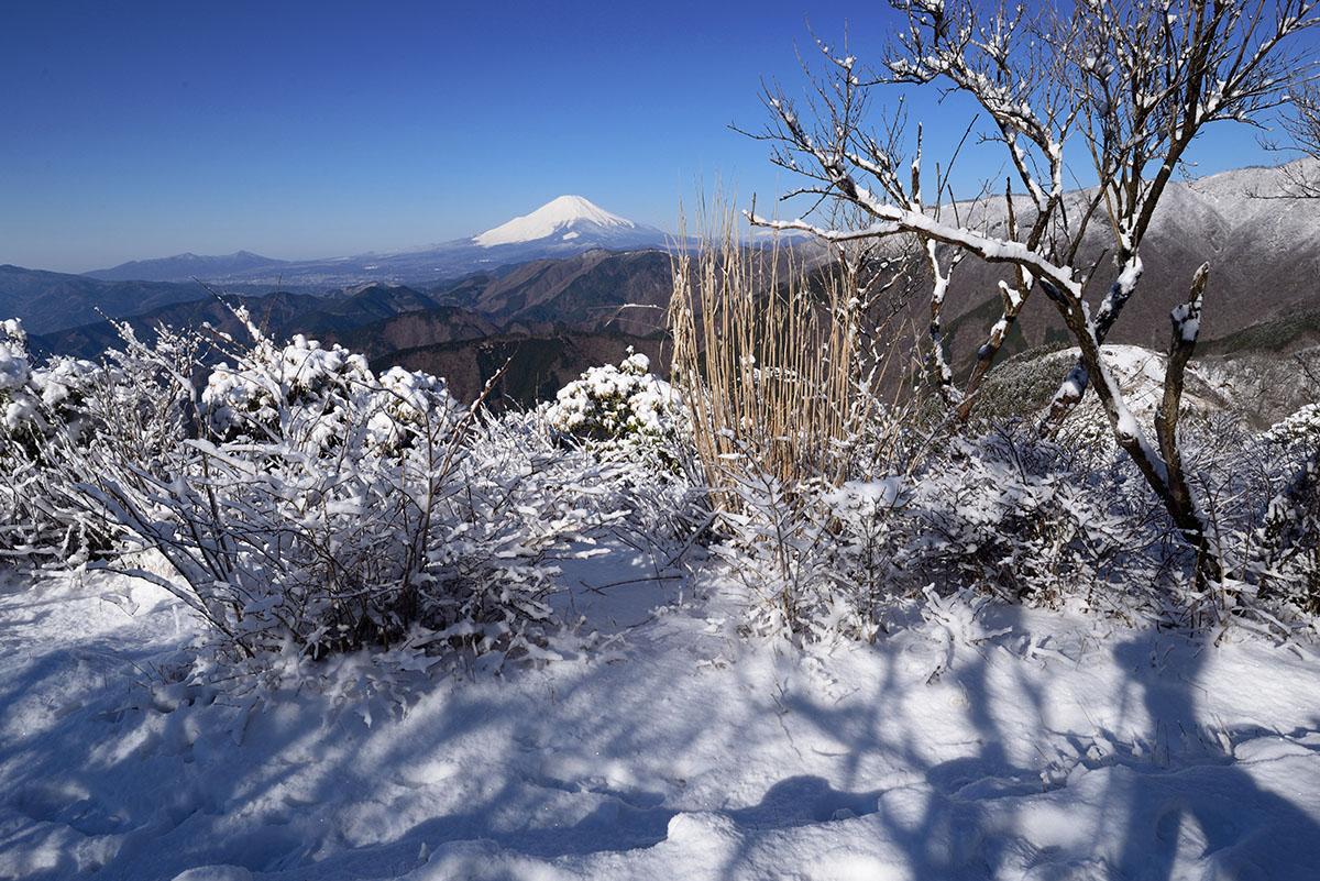 富士山を展望2