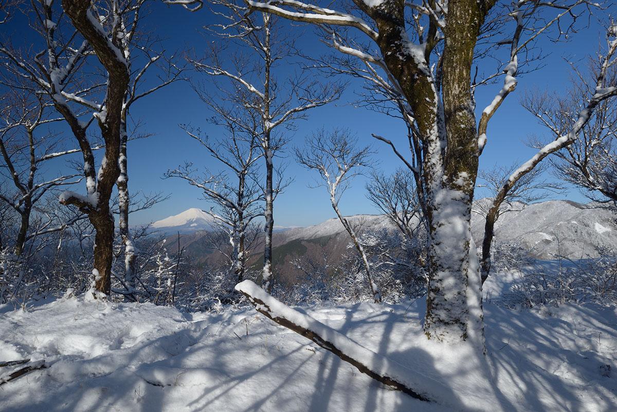 富士山を展望